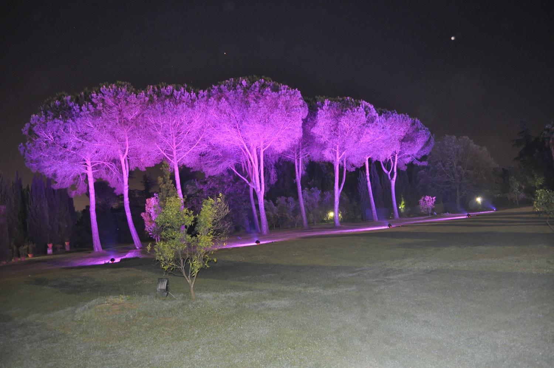 Villa Dino (2)