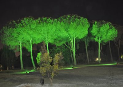 Villa Dino (3)